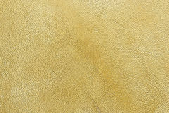 Goat skin Royalty Free Stock Photography