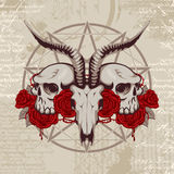 Goat skull on the background with occult symbols Stock Images
