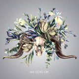 Goat skull in flowers. Tinted watercolor illustration. Stock Images