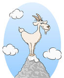 Goat standing on a mountain peak Royalty Free Stock Image