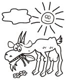 Goat and sun, coloring book Royalty Free Stock Photo