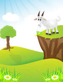 Goat on the top of hill Royalty Free Stock Photography