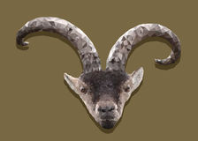 Goat. Triangle goat head with horns Royalty Free Stock Photos