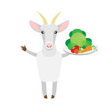 Goat with vegetables Stock Photography
