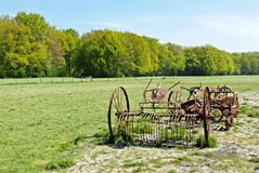 Goatfarm Ridammerhoeve 免版税库存照片