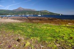 Goatfell στο νησί Arran (Σκωτία) Στοκ Εικόνες