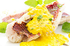 Goatfish Fillet with Saffron cCream Sauce. Goatfish fillet with saffron cream sauce as closeup on white background Royalty Free Stock Photos
