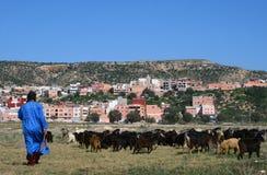 Goatherd στο Μαρόκο Στοκ φωτογραφία με δικαίωμα ελεύθερης χρήσης
