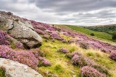 Goathland Cumuje wrzosu i Crags obrazy royalty free
