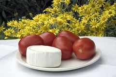 cheese and tomatoes Stock Photography