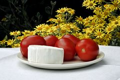 cheese and tomatoes Royalty Free Stock Image