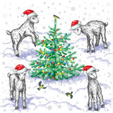Goats and Christmas tree Royalty Free Stock Photo