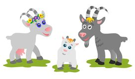 Goats family Royalty Free Stock Image