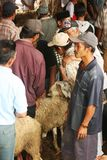 Goats and sheep market Royalty Free Stock Photo