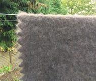 Woollen Shawl. Goats wool natural undyed  grey shawl Royalty Free Stock Image