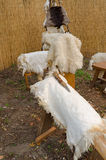 Goatskins. For sale at the market in Italy Royalty Free Stock Photos