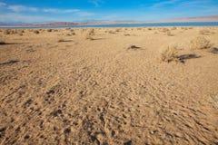 Gobi öken Arkivfoto