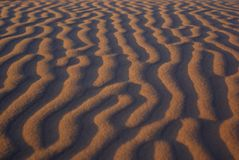 Gobi desert Royalty Free Stock Images
