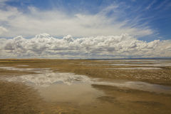 Gobi Desert after rain. Reflection of clouds Stock Images