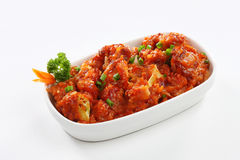 GOBI MANCHURIAN Royalty Free Stock Images