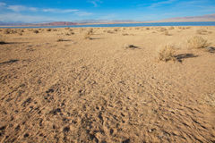 Gobi pustynia Zdjęcie Stock