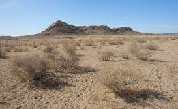 Gobi-Wüste Lizenzfreie Stockfotografie