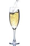 Goblet με το κρασί Στοκ Εικόνα