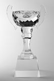 Goblet Royalty Free Stock Photography