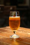Goblet of beer Stock Photography