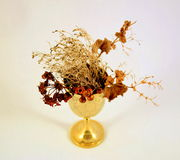 Goblet with dead flowers Royalty Free Stock Image