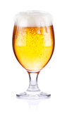 Goblet with fresh beer Royalty Free Stock Photos