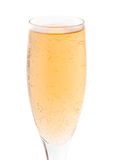 Goblet glass with champaign. On white background stock image