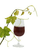 Goblet with red wine Stock Images