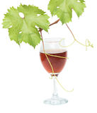 Goblet with red wine Stock Photos