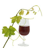Goblet with red wine Royalty Free Stock Photo