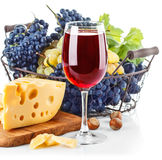Goblet red wine with blue grapes in Stock Images