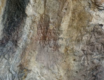 Gobustan stone. Rock and wall drawing of people dancing yalli Stock Images