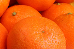 Gocce arancio Fotografia Stock