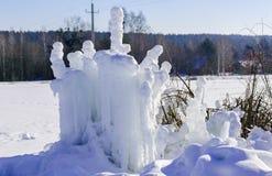 Gocce congelate di acqua sull'erba e dei cespugli con un sole luminoso di inverno Immagini Stock Libere da Diritti