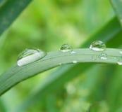 Gocce dell'acqua Fotografie Stock