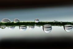 Gocce dell'acqua con le strisce Fotografia Stock