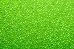 Gocce dell'acqua su verde Immagine Stock