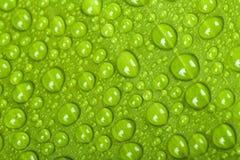 Gocce dell'acqua sul foglio della pianta verde Fotografia Stock Libera da Diritti