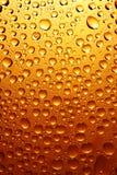 Gocce della birra Fotografia Stock