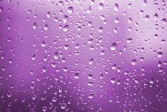 Gocce della pioggia con indicatore luminoso viola immagini stock libere da diritti