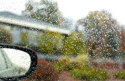 Gocce della pioggia e cespugli confusi luminosi di autunno Immagine Stock