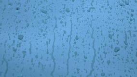 Gocce della pioggia su vetro archivi video