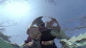 Gocce della primavera archivi video