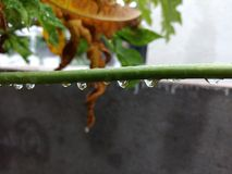 Gocce di acqua Fotografie Stock