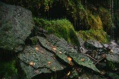 Gocce di acqua di caduta sulle pietre muscose Fotografie Stock